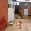 Ntinda house to let