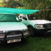 2 Nissan pickups for quick sale