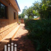 Furnished House In Jinja For Rent